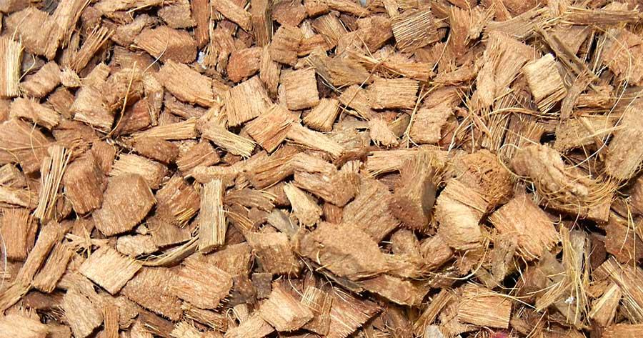 PURA FIBRA: Fibra de coco como medio de cultivo